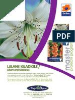 276_ljiljani-gladiole