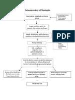 1.Pathophysiology of Meningitis