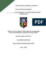 TESIS ROXANA FINAL.doc