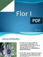 Flor 120121