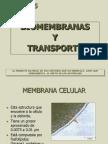 Biomembranas y Transporte