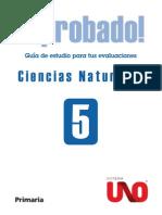 Guia Ciencias Naturales 5º