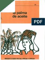 24_La Palma de Aceite