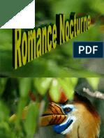 Romance Diurne