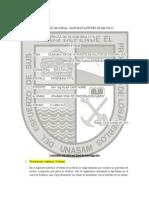 Informe - Estática (2013-I)