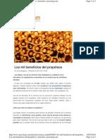 Los Mil Beneficios Del Propóleos | Artículos
