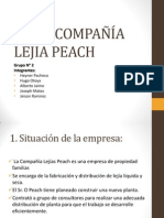 Caso Lejia Peach - Grupo 2 GOP Centrum 2014