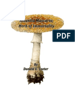 Herb of Immortality
