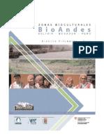 diagnostico_pitumarca.pdf