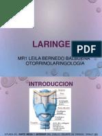 Resumen de laringe