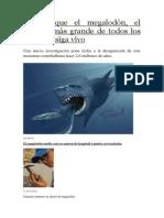 Niegan Que El Megalodón, El Tiburón Más Grande de Todos Los Tiempos, Siga Vivo