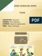 Economia Oferta y Demanda