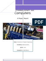 Introduction to Computer Programming Project Report