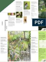 ratgeber_ggwildbienen_i.pdf