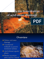 acid_mine_drainage.ppt