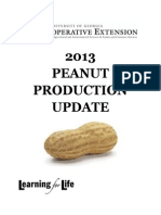 2013 Uga Peanut Production Guide