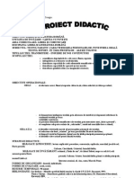 100 Proiect Didactic