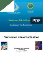 13 - Síndrome mielodisplásico