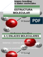 5 ESTRUCTURA MOLECULAR