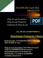 Sesion 8 Flujos de Caja Del Proyecto