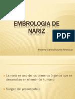 Embrologiadenariz 120430151301 Phpapp01(1)