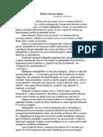 Florin Scrie Un Roman de Mircea Cartarescu (rezumat)
