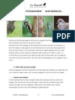 Tuinvogels Fotograferen PDF