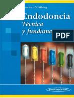 Endodoncia Tecnica y Fundamentos