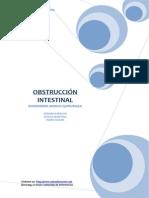 Trabajo Obstruccion 2