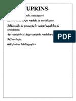 Securitatea Datelor Personale În Cadrul Rețelelor de Socializare