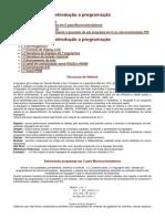 Introducao a programacao.pdf