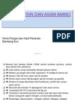 d013_tps08317p_kimia Protein Dan Asam Amino Bebe
