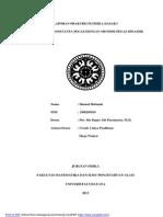 Laporan_praktikum_fisdas_pegas-libre.pdf