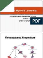 Chronic Myeloid Leukemia Hammad