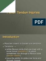 IT 18 - Flexor Tendon PP
