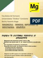 Magneziu power point