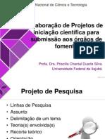 Elaboração de Projeto de Ic Para Agência de Fomento