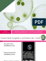 1.Da Uni à multicelularidade.pdf