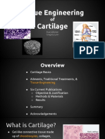 Tissue Eng. Cartilage Final Presentation (1)
