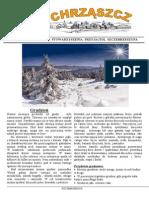 Chrząszcz - Grudzień 2014 (Nr 105)