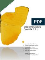 IDENTIFICACION DEL SISTEMA ORGANIZACIONAL DE LA EMPRESA.docx