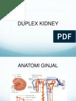 Duplex Kidney Prin