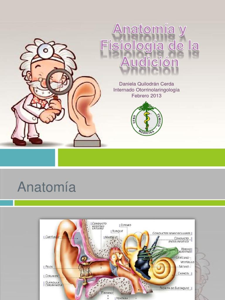 Anatomía y Fisiología de la Audición