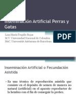 Inseminación Artificial.pdf