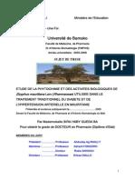 06P14.pdf