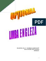Optional Limba Engleza