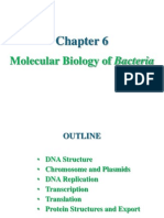 6. Molecular Biology of Bacteria