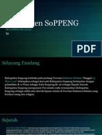 Kabupaten SoPPENG_2