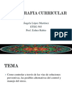 cartografia curricular