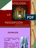 alteraciones-sensoperceptivas (1)